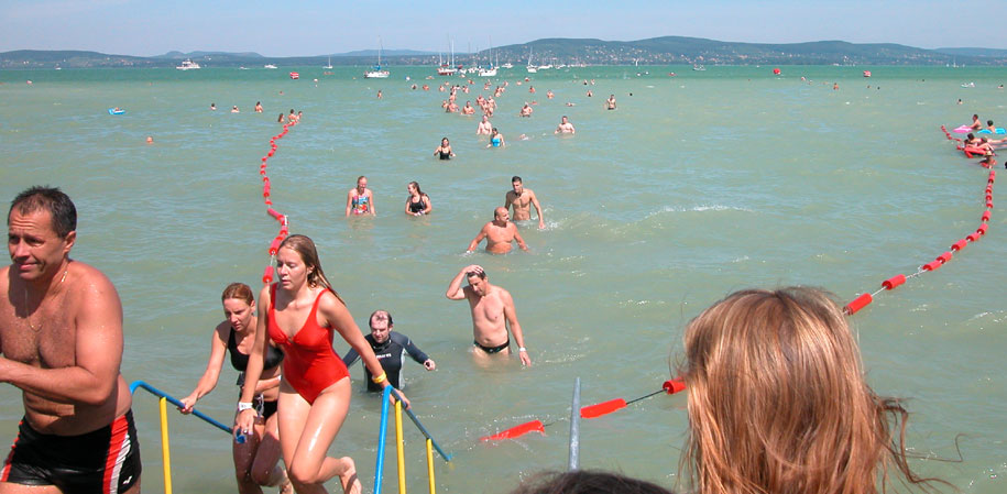The annual 5.2 km swim from Refulop to Balatonboglar